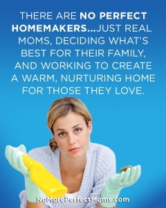 No_Perfect_Homemakers
